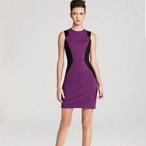 CYNTHIA STEFFE Color Block Aubrey Dress